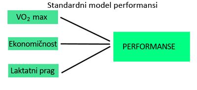 standardni-model-performansi